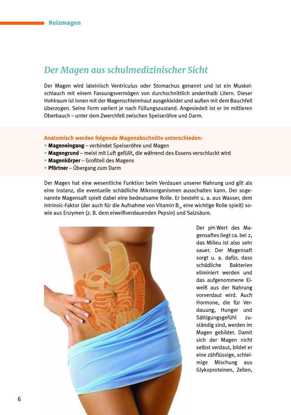 Großartig Funktionen Des Magen Galerie - Menschliche Anatomie Bilder ...